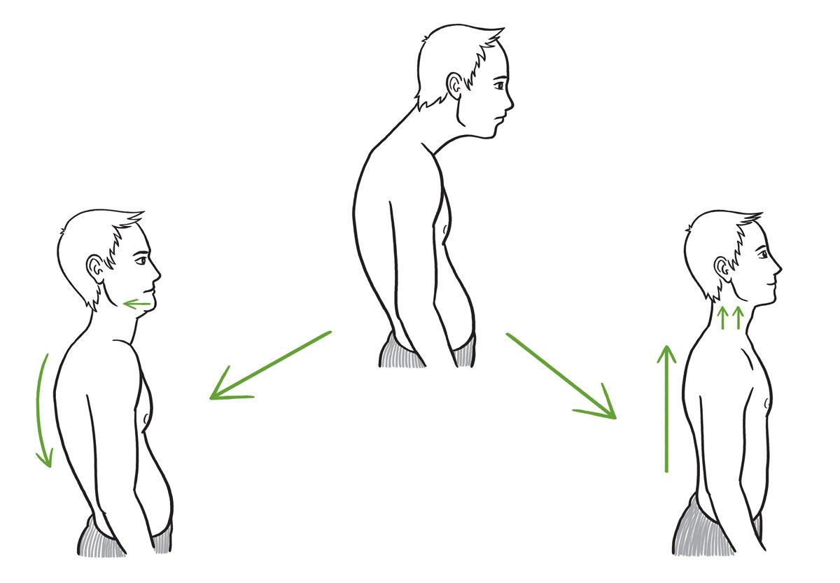 Kresba pro knihu Síla stabilita mobilita